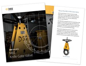 DSS Valves TIV Brochure